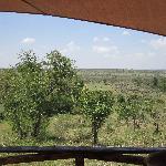 View from side of veranda