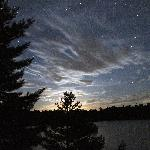 Massasauga at Night
