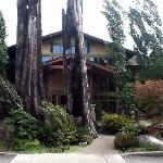 View of Willows Lodge from the Barking Frog Restaurant