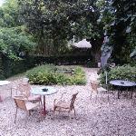 copas en el jardín con el sonido de la fuente de un río