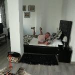 Zebra room 4