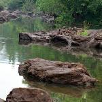 River Periyar in the backyard