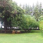 il giardino di Case Damma