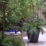 Our small inner garden