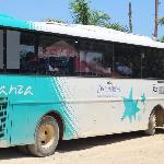 Bus decameron