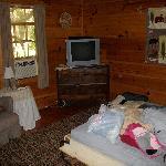 Cabin Bedroom/Living Room
