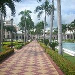 calle central de jardines