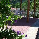 A relaxing spot to drink your coffee at Ilaeiras gardens !