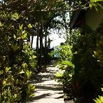 Blick vom Resort Richtung Meer