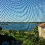 Serene morning view from my studio rental.