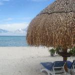 A limited section of cabanas and chairs on the left side of the beach that are not roped in and