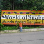 World of Snakes Foto