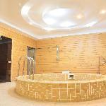 saunaSingular sauna  Plural saunas