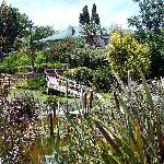 Gorgeous landscaped gardens