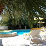 piscine et solarium