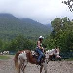 Horse-riding nearby!