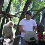 zoo bubalco