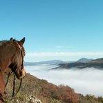 Beautiful trail rides near Quillan, Aude