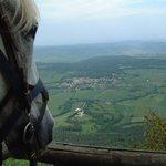 Explore Cathar Country on horseback!