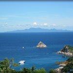 View Shark Island