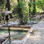 自然の中の 湯畑