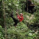 Zip Line - zip through the tree tops!