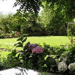 The Garden at Hillsfield House