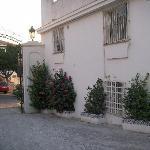 Entrance flowers.
