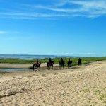 Ein Highlight für Alt und Jung - Reiten am Strand