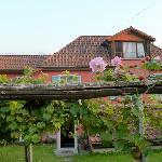Villa sempreverde Foto