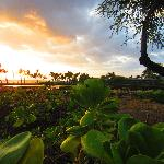 Waikoloa Beach as seen from the Sunset Luau