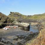 Boscastle harbour- can you spot the seals? a 5 min stroll along the cliff tops