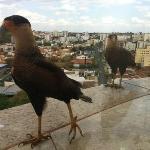 Photo of Quality Inn Saint Paul Rio Preto