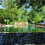 The pool, stunning