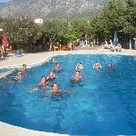 Almost everyone in the pool!