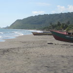 To Little Ochi on the South Coast for the freshest fish you can find