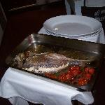 Our Grilled fish
