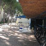 Cycle shed