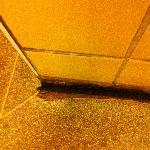 the filthy peeling floor