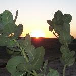 Coucher de soleil avec Tourza