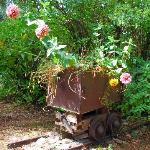 An old mining cart planter