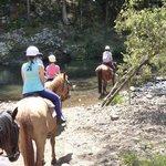 Numinbah Valley Adventure Trails Photo