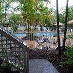 Poolside garden from unit