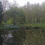 the lake in the gardens