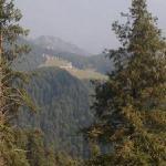 view of khajiar & pirpanjal ranges