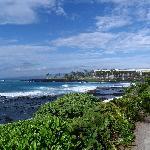 The beautiful coast off the hotel