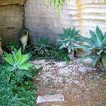 Giardini ipogei a Villa Margherita
