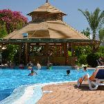 Large clean pool