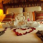 The Honeymoon Suite-Exquisite