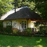 African Dreams thatched rondavel